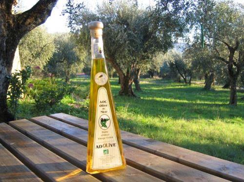 Le Domaine et son huile d'olive